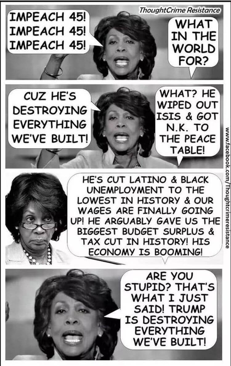 Is This The Best Anti Maxine Waters Meme Of All Time